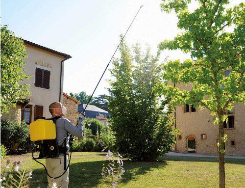 LANCIA TELESCOPICA GIGANTE DA 3.6 MT